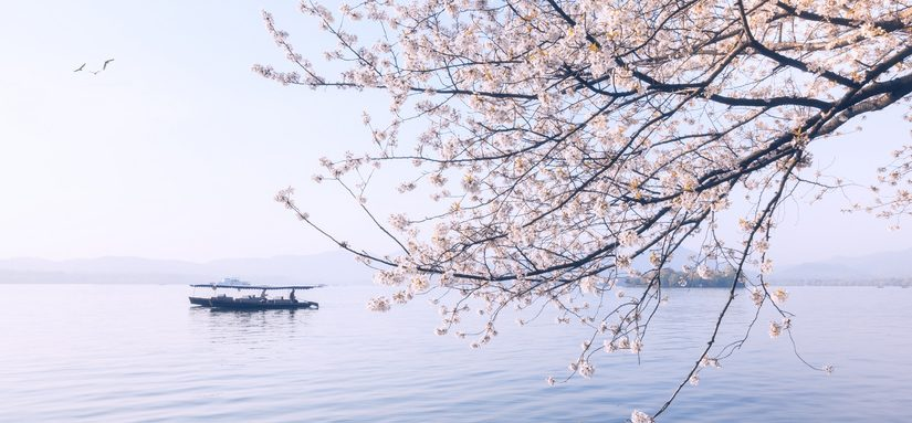 江苏省高级人民法院侵害商标权民事纠纷案件审理指南(2021修订版)